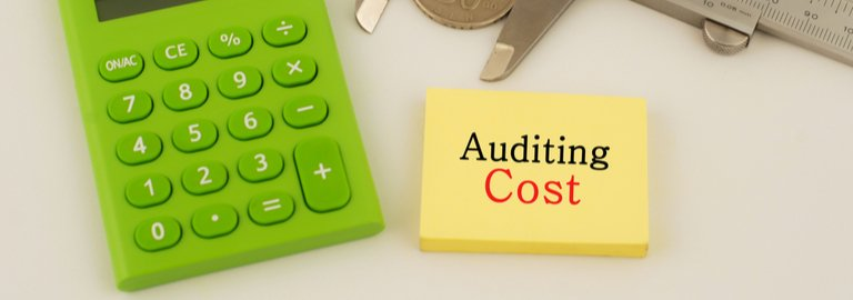 auditing-cost featured